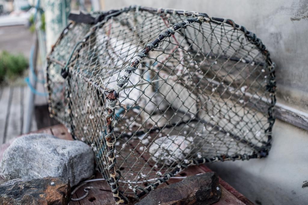 ... lobster trap ...