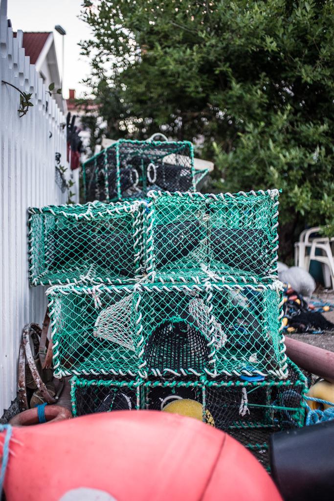 ... lobster traps II ...